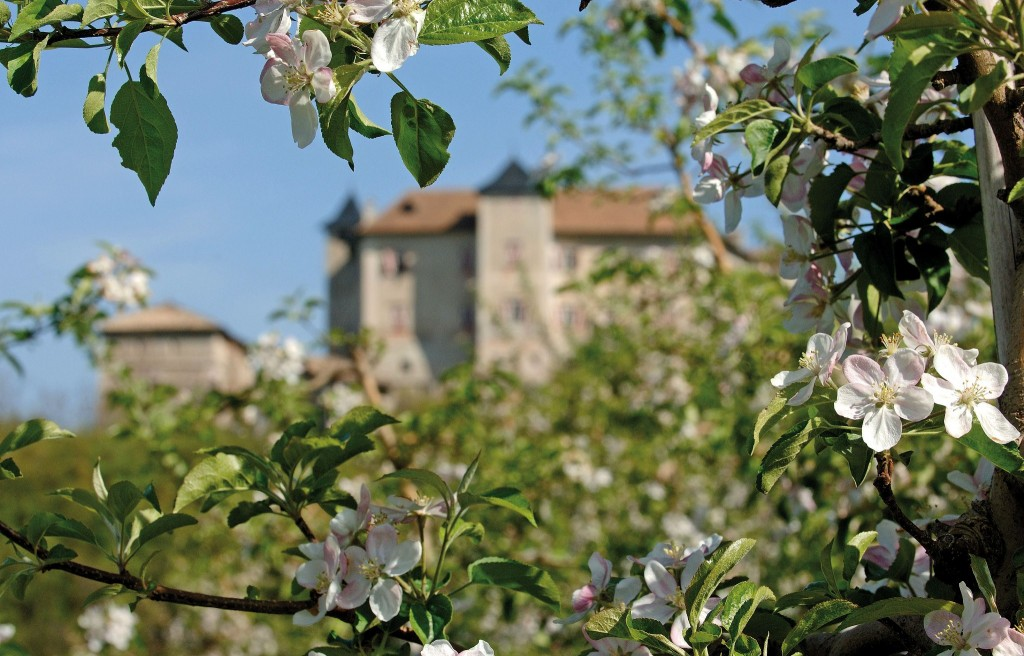 castel-thun-valdinon-trentino-fioritura-vacanza-relax-benessere-trention