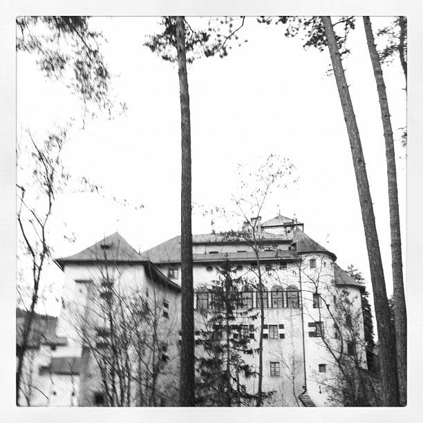 Scorcio di Castel Bragher nella pineta sotto Coredo