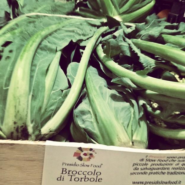 Il broccolo di Torbole