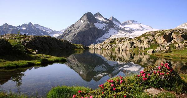 Trentino's natural parks