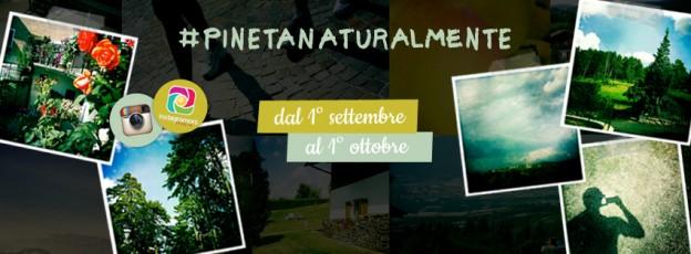 01_FacebookCONCORSO_PINETA_V01