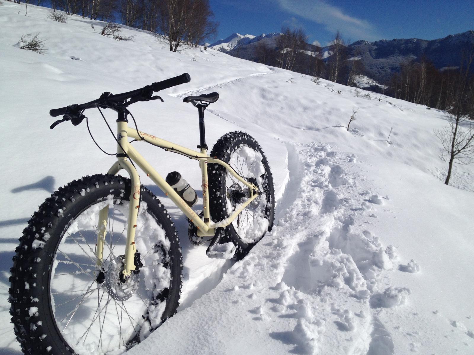 SNOW BIKE: L'EMOZIONE DELLA MTB SULLA NEVE