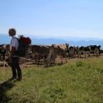 ESCURSIONI CON LIVIO in montagna-relax