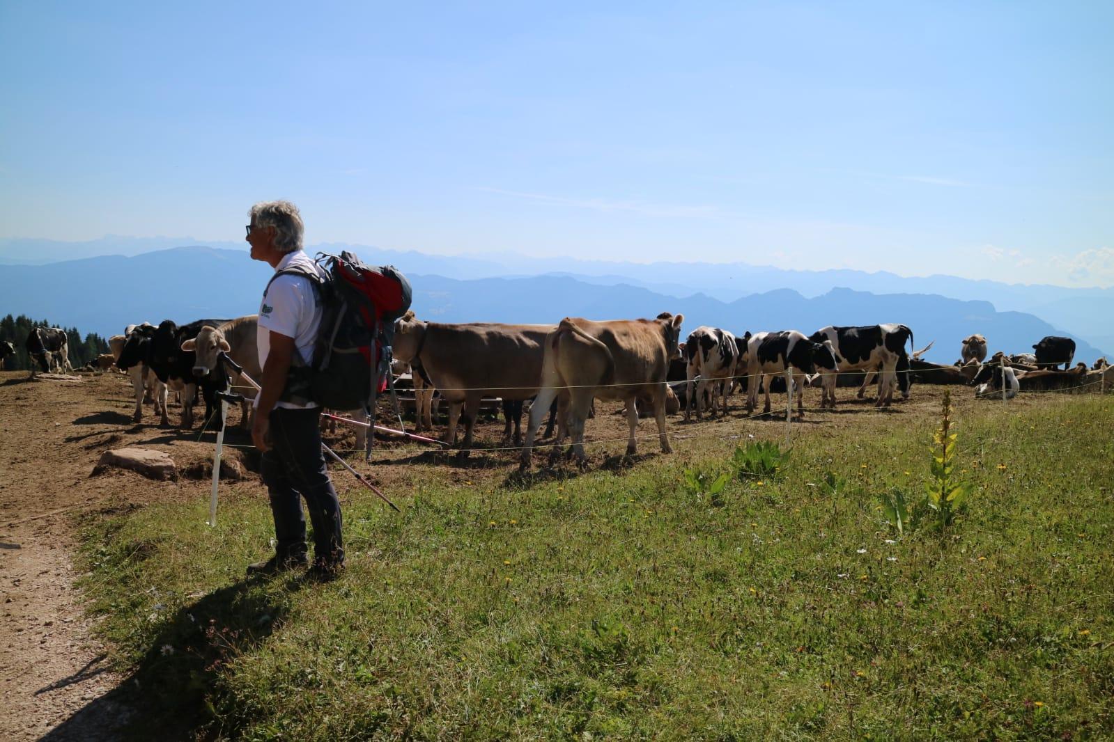 Escursione con Livio in montagna
