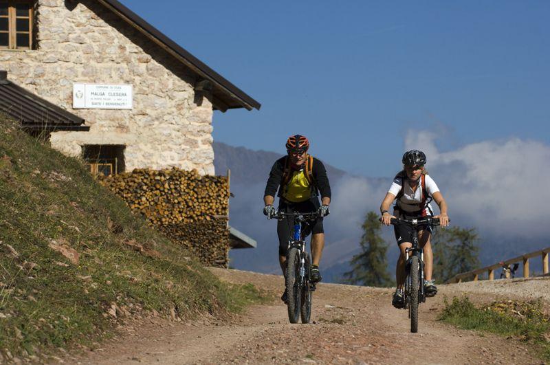 Prova le nostre E-Bike per delle escursioni fantastiche in Mountain Bike sui sentieri del Trentino