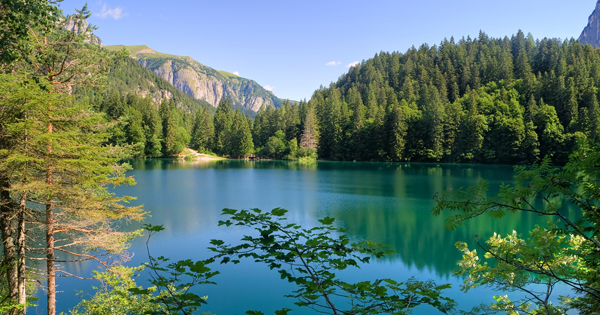 what to see in Trentino's Val di Non