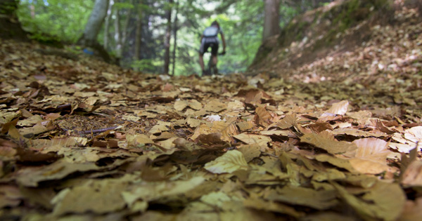 autunno-in-bici