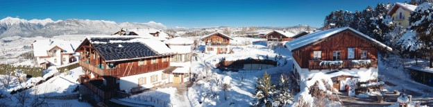 Pineta sotto la neve inverno 2018