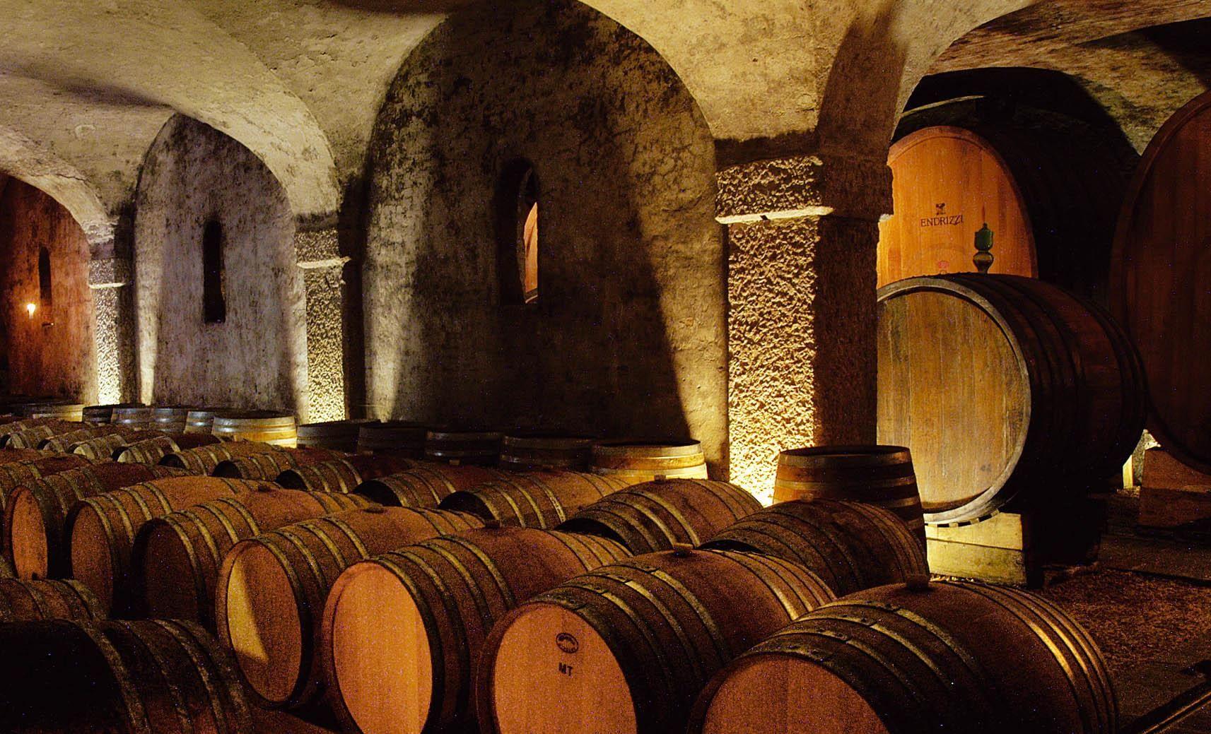 Interno della cantina Endrizzi a San Michele all'Adige