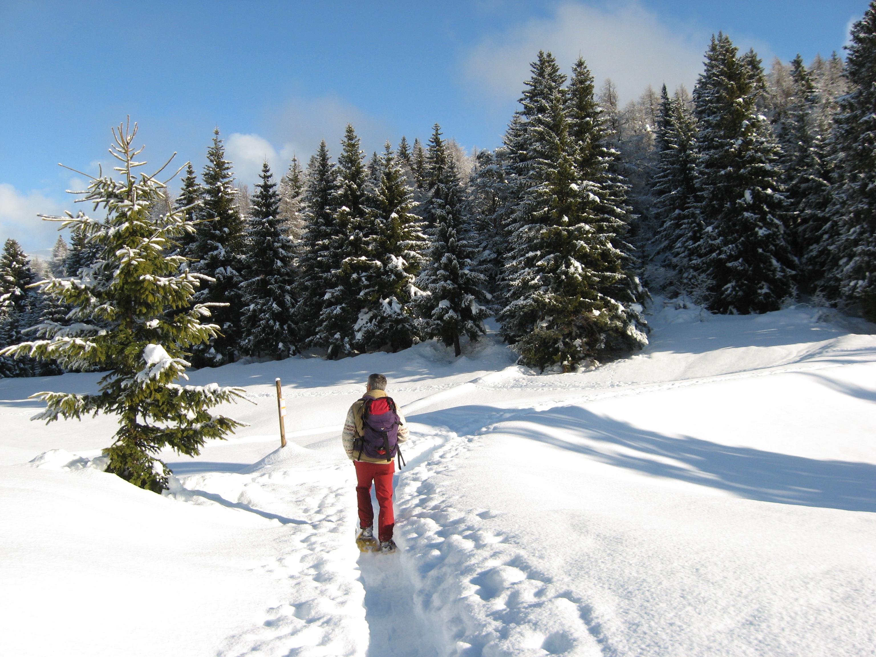 Escursione con Livio con le Ciaspole sulla neve delle nostre montagne