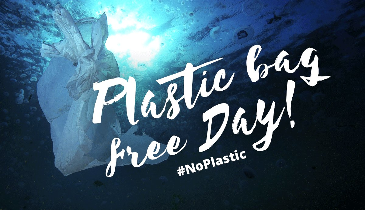 Il 12 settembre, per la Giornata internazionale senza sacchetti di plastica, saremo attivi anche qui al Pineta con un evento speciale