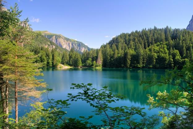 Summer view of Tovel Lake, Val di Non, Trentino Italy.