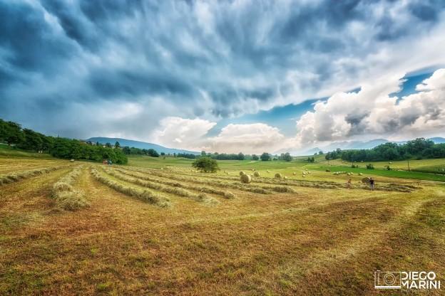 con il fieno naturale dei nostri campi, profumi meravigliosi vi aspettano nelle nostre cabine estetiche e relax
