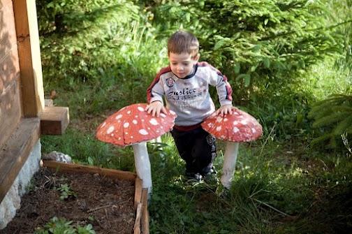 Andiam per funghi, vacanza family per ogni stagione