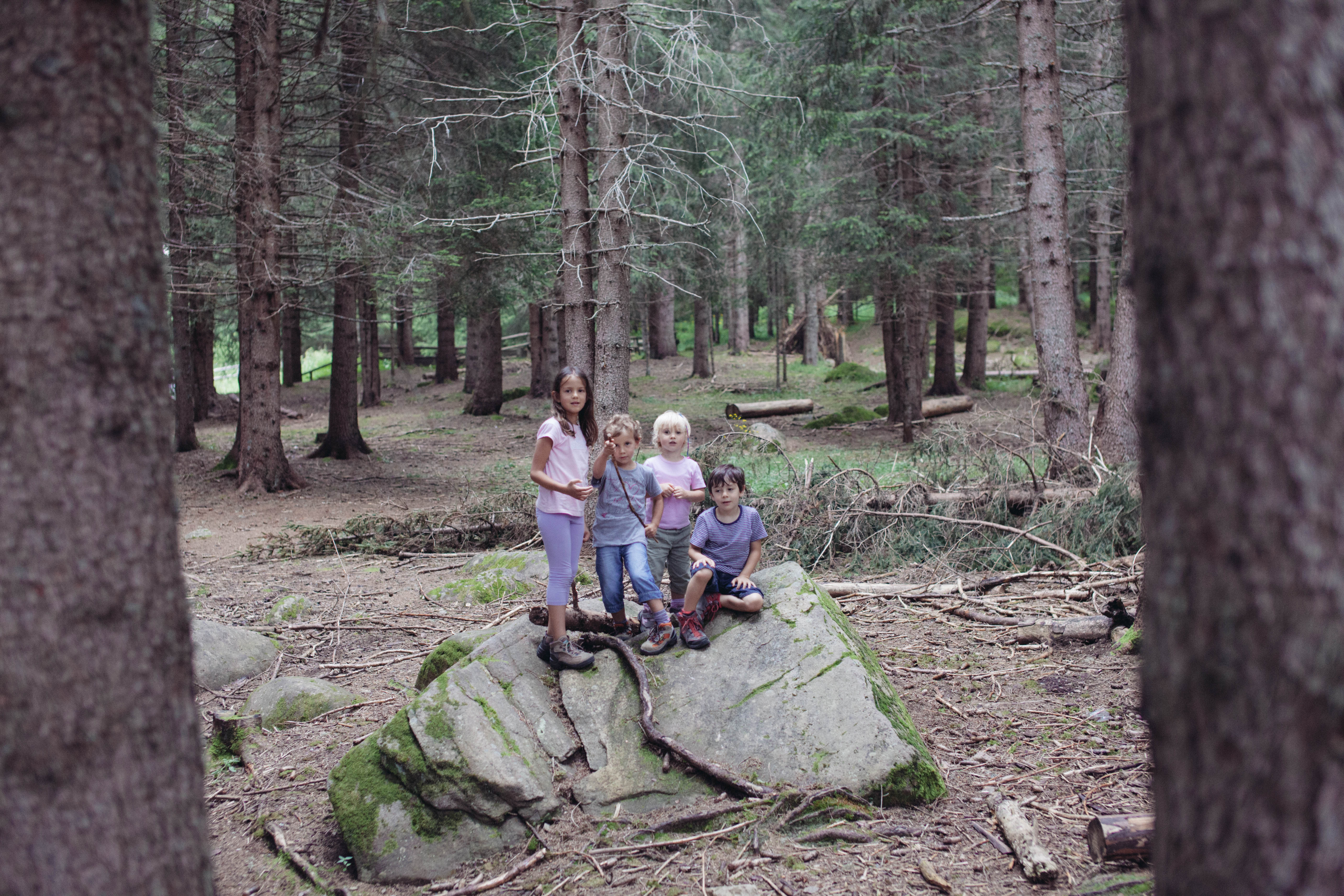 Arrampichiamo sulle rocce nel parco dello Stelvio