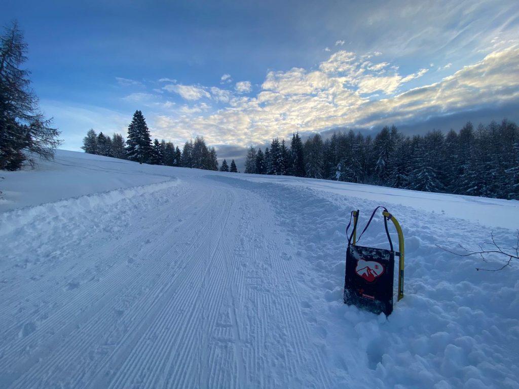 Con la slitta sulla neve