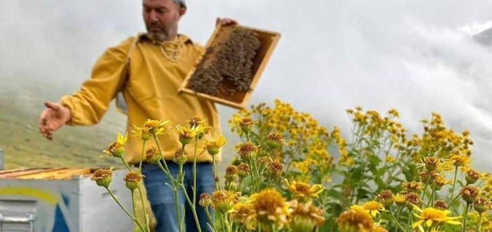 Andrea_Paternoster-giornata-mondiale-api