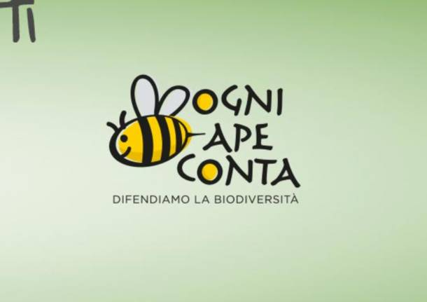 ogni-ape-conta-api-giornata-mondiale