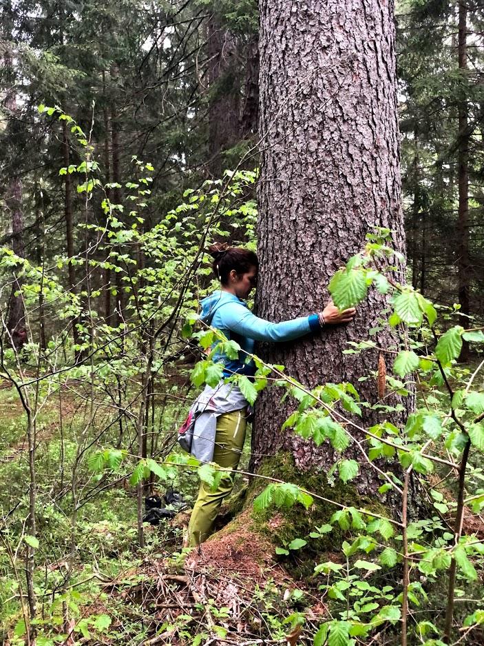 tree-hug-trentino-pineta-nature-spa-tamara-lungher-1